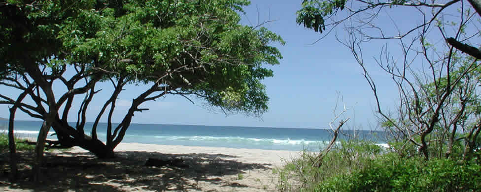 Costa Rica Beaches Properties